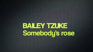 Bailey tzuke - Somebody