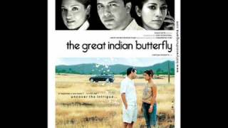 You Have to Love Me The Great Indian Butterfly