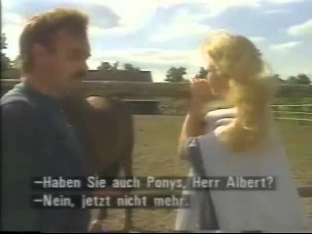 Deutsch Aktuell - Lessons - Tes Teach