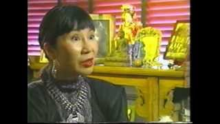 Amy Tan Suffers Lyme Disease- A Genius Mind Goes Missing