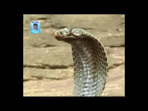 GOGA TELIFILM | GOGAJI TELIFILM | SACHO BAPA SARDHAV NO GOGO | SARDHAV BHUVAJI