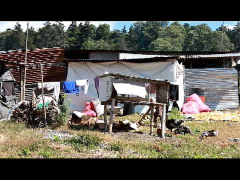 Projectguat.com - The Village of Chutinamit, Guatemala