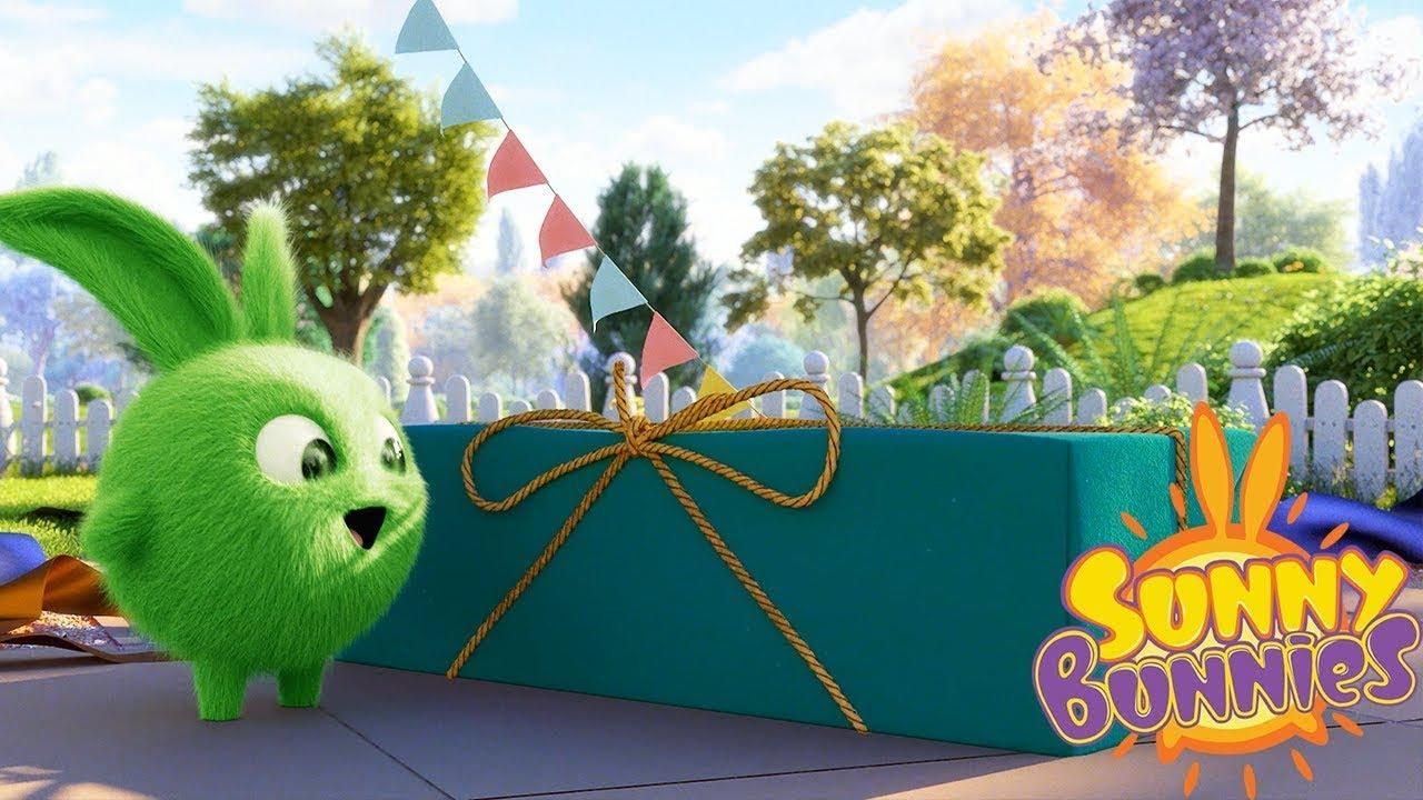 Sunny bunnies regali di natale cartoni animati divertenti per