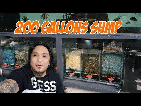 200 Gallons Sump