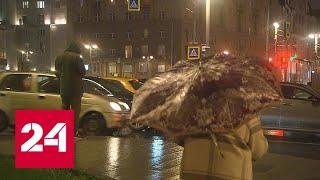 На центральную Россию обрушились сильные дожди - Россия 24 