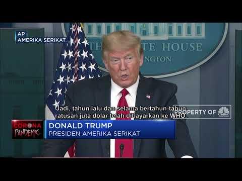 Trump Yang 'Hobi'