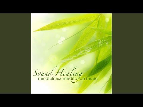 Mindfulness Meditation (Concentration, Kundalini Yoga)