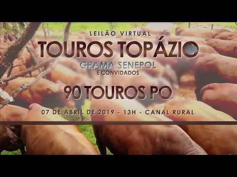 Leilão Touros Topázio Grama Senepol & Convidados Chamada