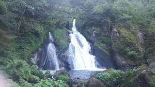 Triberger Wasserfälle im Sommer und die größte Kuckucksuhr