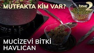 Mutfakta Kim Var?: Mucizevi Bitki Havlıcan
