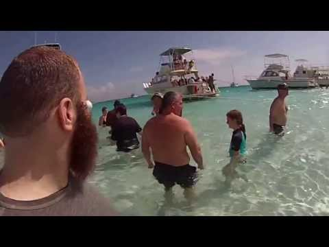Grand Cayman - Stingray City