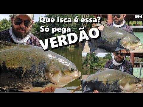 Que isca é essa que só pega VERDÃO ??? (Fishingtur #694)LAGO VERDE
