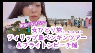 【女ひとり旅】#4 オーストラリア インスタ映えビーチ&フィリップ島ペンギンパレードツアー編~英語ができない海外旅行