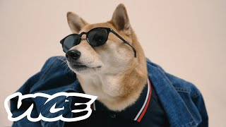 'Menswear Dog' - The Most Stylish Dog on Instagram
