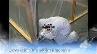 Mold Testing in CANADA   AsbestosMoldTesting.com