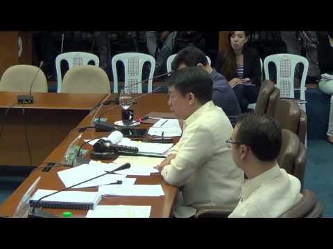 Senate subcommittee junks Binay challenge anew