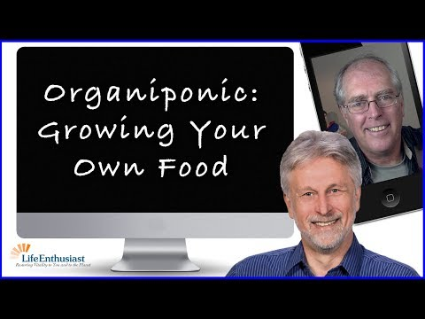 Organiponic - Growing Your Own Produce