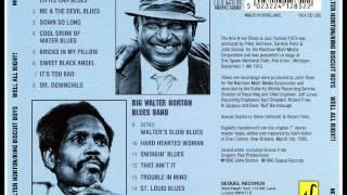 King Biscuit Boys (Little Sonny Blake) - Down So Long