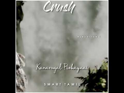 seramal-ponal-||-mazhai-pozhithidum-neram-||-cut-song-for-whatsapp-status-||-smart-tamil-||