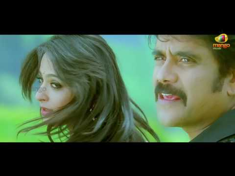 Nesthama Nesthama Song   Damarukam Movie Video Songs   Nagarjuna   Anushka   DSP   Mango Music