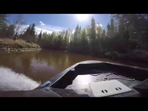 Mini Jet Boat Log Hoppin on  Little Chena River, Alaska