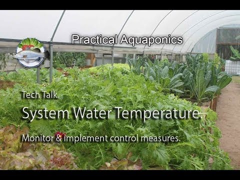 System Water Temperature;
