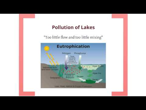 Environmental Science: Water Pollution