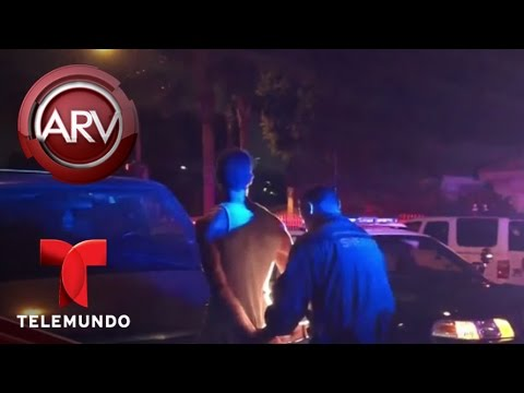 Acusan a un oficial de mentir en un informe policial | Al Rojo Vivo | Telemundo