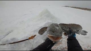 Рыбалка На Енисее ЖЕСТЬ