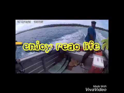 Download Enjoy Reao life 🤘