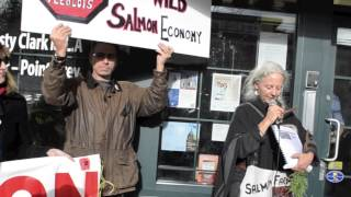 Salmon Are Sacred / The Fight To Save BC's Wild Salmon Continues