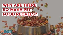 Why Are There So Many Pet Food Recalls?