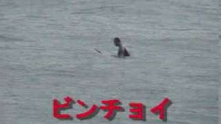 2008.10.28 崖下セッション
