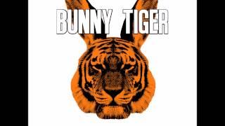 sharam jey teenage mutants pushin on sharam jey street edit bunny tiger bt021