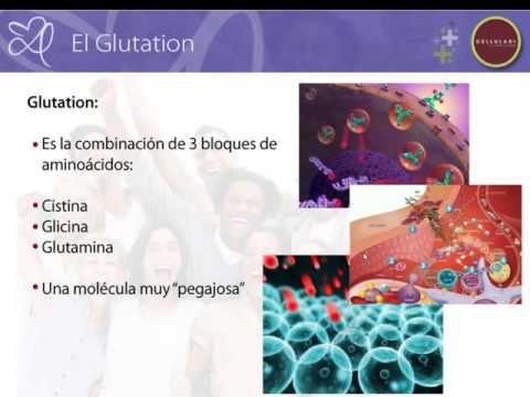 quÉ es el glutatiÓn  el padre de los antioxidantes  youtube