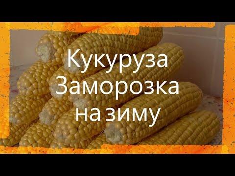 Как сохранить кукурузу в початках свежей