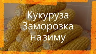 Как заморозить кукурузу  Замораживаем свежую кукурузу  Заморозка кукурузы на зиму