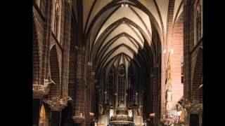 Fauré Cantique de Jean Racine - Bach Choir & Orchestra of the Netherlands (Concertgebouw, live)