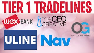 HOW TO BUILD BUSINESS CREDIT FROM STRATCH: NET 30 ACCOUNTS FOR NEW BUSINESS | TEAM TIGGIO | ULINE