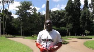 第四章_Clean up Harare ジンバブエ清掃活動