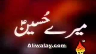 Mai kitne teer nikaloon ki tum ko chain mile - Mir Hassan Mir