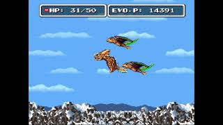 EVO Search for Eden - 10 - Birds