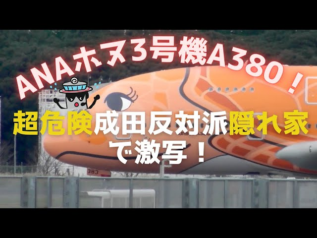 ANAホヌ3号機A380「ラー」成田空港ド真ん中の超危険反対派隠れ家から激写!