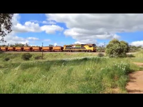 Australian Trains 15 - trains in Toodyay Western Australia