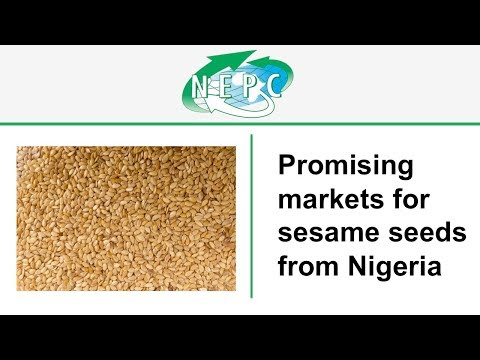 Promising Markets - Sesame Seeds from Nigeria