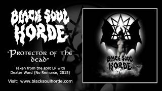 BLACK SOUL HORDE - Protector of the Dead