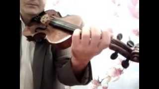 ИГРА НА СКРИПКЕ.КАК СТАВИТЬ ПАЛЬЦЫ?(Все бесплатные уроки:http://ko.urokimusic.com Купить самую недорогую скрипку:http://ali.pub/u1pn9 Большой выбор скрипок:http://ali.pu..., 2014-09-29T17:34:46.000Z)