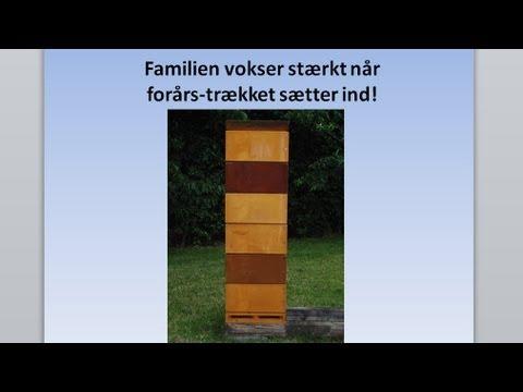 3 bimøde 30 04 2013 Peter Sørensen a