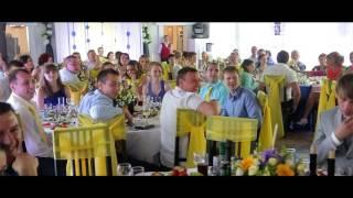 Ведущий на свадьбу Лялюшкин Иван