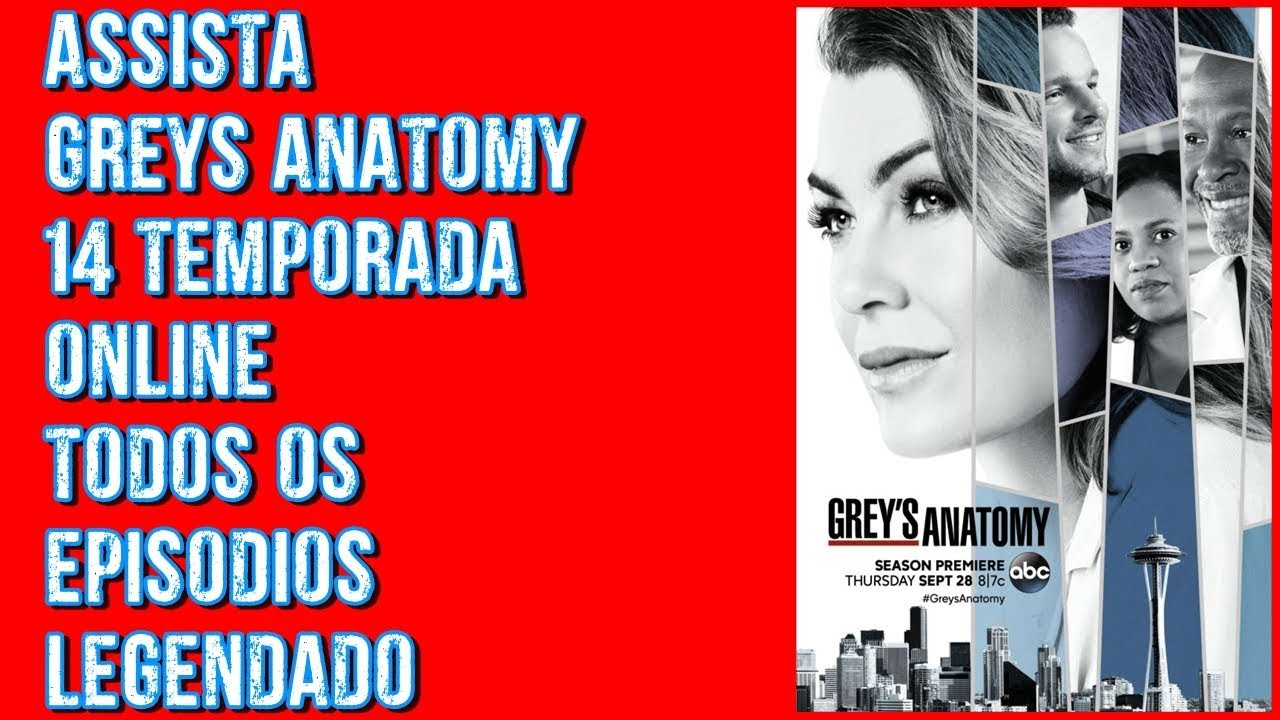 Grey S Anatomy 14ª Temporada Legendado Assistir Online Youtube
